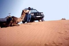 location voiture marrakech.jpg